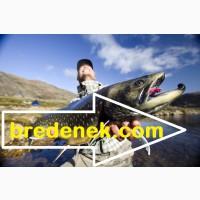 Сайт – Бреденек, сетевые полотна