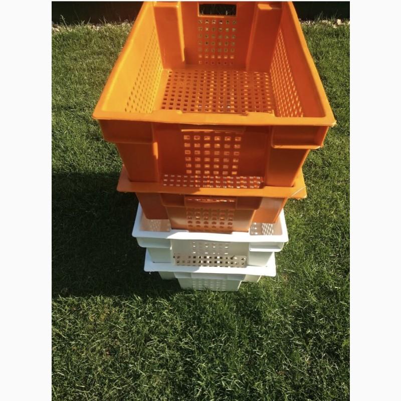 Фото 9. Пищевые хозяйственные пластиковые ящики для мяса молока рыбы ягод в Запорожье купить