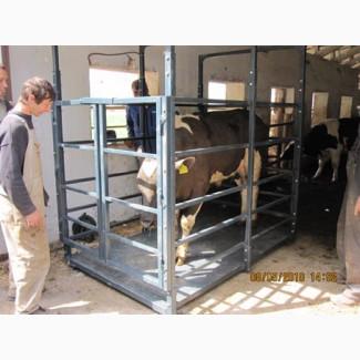Весы для животных, КРС, свиней, коров 600, 1500, 3000 кг