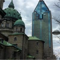 Канадская иммиграционная компания предлагает все виды иммиграционных программ в Канаду