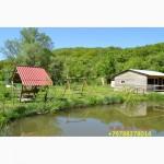 Отдых в горах Крыма, рыбалка, выходные на озере у воды
