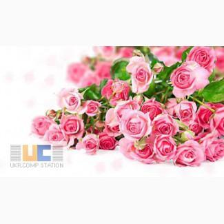 Минеральное органическое удобрение ГУМАТ КАЛИЯ AGRO для роз