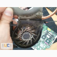 Чистка ноутбука от пыли - качественно и с гарантией